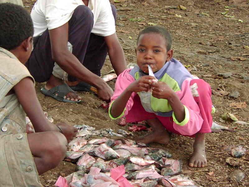 Eatingfreshfish